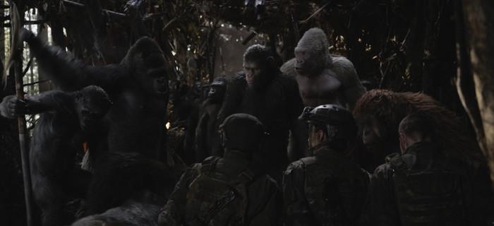 Lato w kinie - Wojna o planetę małp