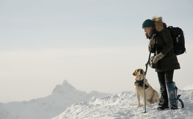 Nagłówek - Pomiędzy nami góry